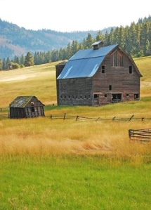 Old Barn photo_stock image