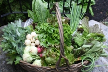 farmers basket