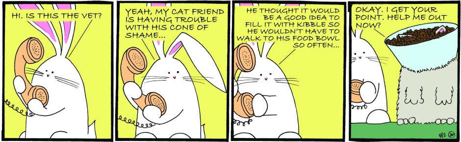 Bunny calls on the vet to make a full-faced point to Mieux.